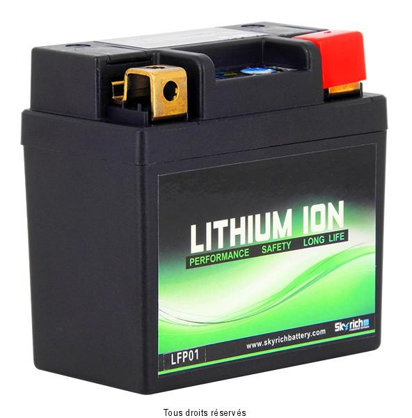 Batteria Litio Skyrich LFP01